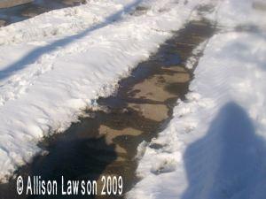 snowysidewalk